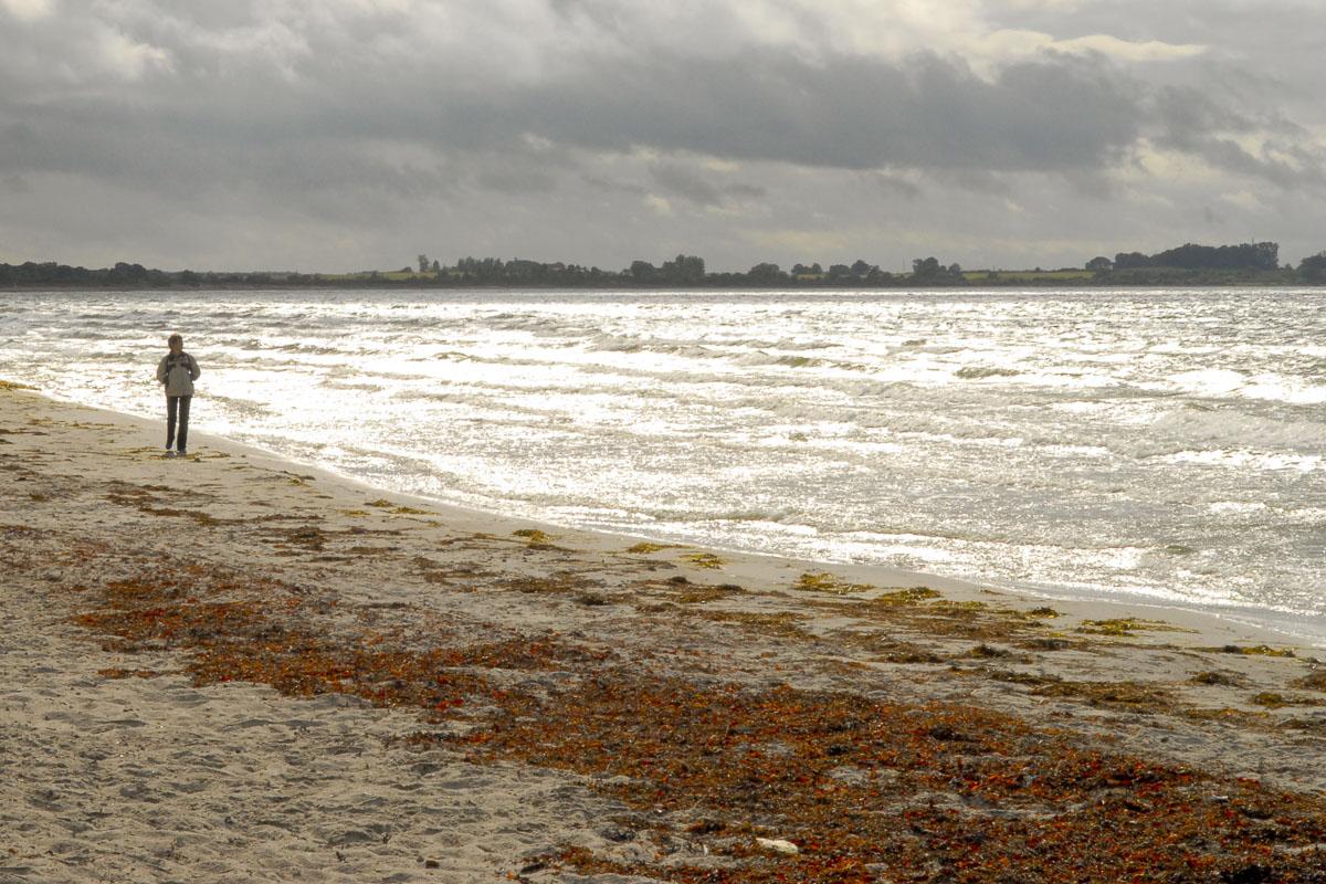 Hav strand Foto: Bo Normander