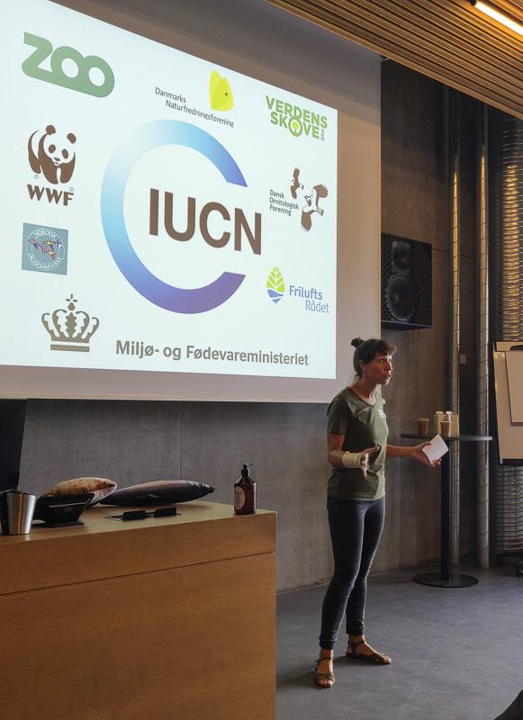 Ann-Katrine Garn ved hav-møde